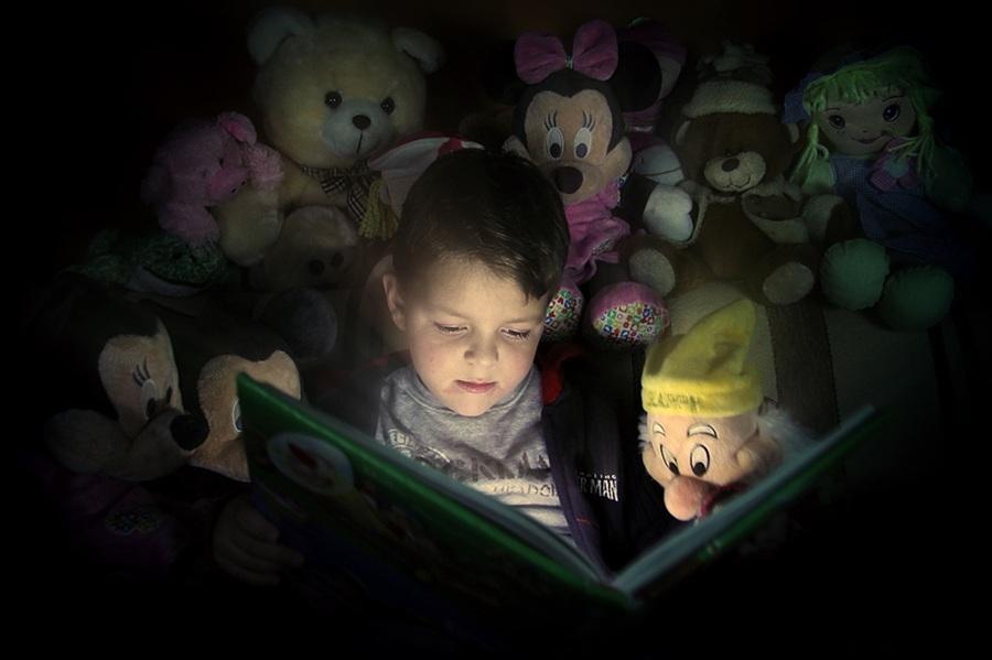 El ingenioso hidalgo don manolo el m dico de mi hij - Luz para leer en la cama ...