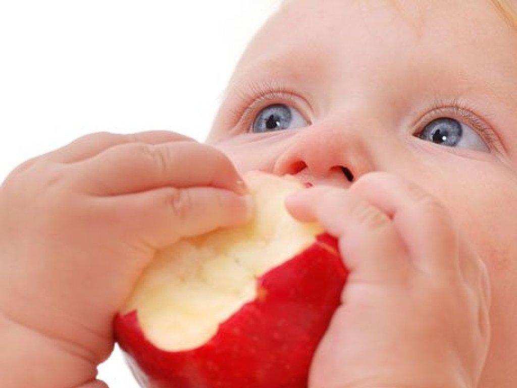 alimentacion complementaria para bebes de 6 meses